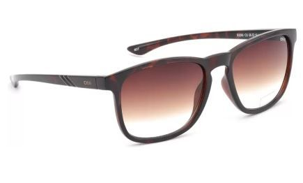 IDEE Rectangular Sunglasses (Brown) at 47% Off
