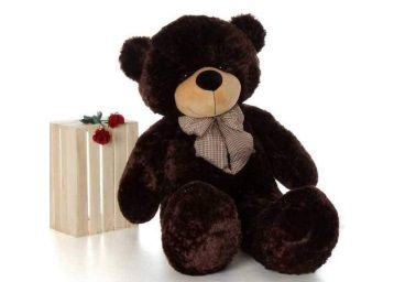 Click4Deal Teddy Bear Choclate Brown 4 Feet (121 Cm) at Rs. 485
