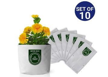 Trust Basket Poly Grow Bags UV Stabilized -10 Qty at Rs. 254