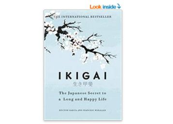 Flat 24% off on Ikigai at Rs. 380