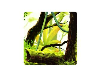 Mossy Forest Live Wallpaper Worth Rs. 230 For Free