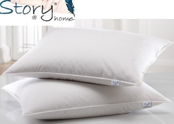PRICE Down:- Story@Home 2 Piece Pillow Set at Just Rs. 272 [After Cashback] low price