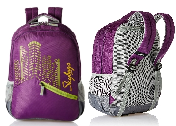 Flat 64% Off : Skybags Footloose Colt 30 Ltrs Purple Backpack at Just Rs. 1288 low price