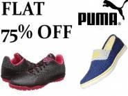 Flat 75% Off : Puma Men