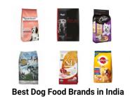medium_161829_best-dog-food-brands.png