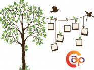 Decor Your Wall - Asianpaints Wall Stickers For Just Rs. 40