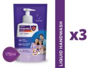 Dhamaka Price : Liquid Handwash [ Pack Of 3 ] At Rs. 3 + Free Shipping