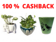 Tiaraa 100% CB Sale - Buy Products Worth Rs.450 For FREE