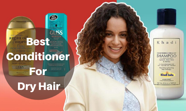 Best Conditioner for Dry Hair in India (2020)