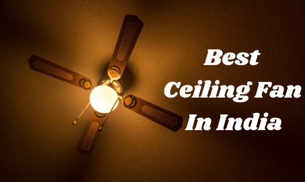 Best Ceiling Fan In India: A Complete Buying Guide For You